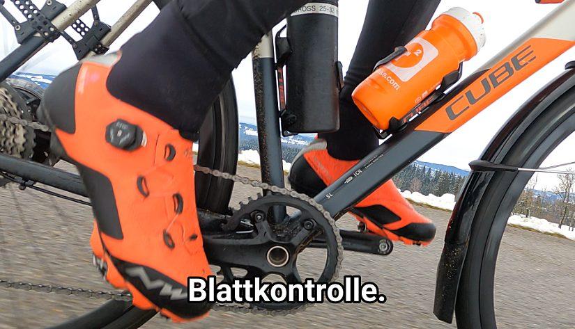 Blattkontrolle im Oberland